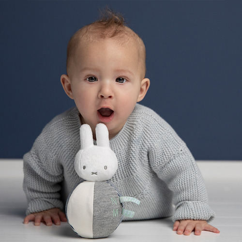 Miffy ABC Roly Poly